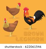 chicken brown leghorn cartoon...   Shutterstock .eps vector #622061546