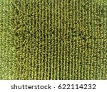 high angle view of corn field | Shutterstock . vector #622114232