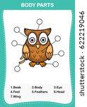 illustration of owl vocabulary...   Shutterstock .eps vector #622219046