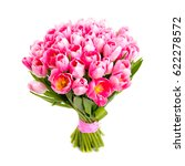 bunch pink tulips isolated on... | Shutterstock . vector #622278572