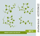 green plant vines   set 3 of 3 | Shutterstock .eps vector #622310612