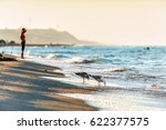 sandy beach shoreline at black... | Shutterstock . vector #622377575
