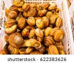 the shellfish | Shutterstock . vector #622383626