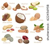 various kinds of color flat... | Shutterstock . vector #622456958