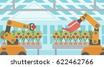 robot picking tomatoes in... | Shutterstock .eps vector #622462766