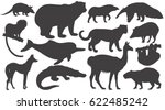black silhouettes animals of... | Shutterstock .eps vector #622485242