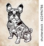 vintage style beautiful bulldog ... | Shutterstock .eps vector #622496786