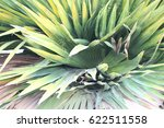 green leaves  | Shutterstock . vector #622511558