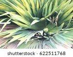 green leaves  | Shutterstock . vector #622511768