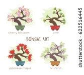 vector illustration of bonsai... | Shutterstock .eps vector #622516445