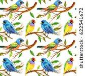 color pencils birds and twigs... | Shutterstock . vector #622541672