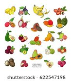exotic tropical fruits hand... | Shutterstock .eps vector #622547198