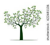 green tree with leafs. vector... | Shutterstock .eps vector #622681136