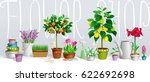 big collection of the pot... | Shutterstock .eps vector #622692698