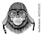 chimpanzee monkey hand drawn... | Shutterstock . vector #622713122