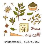 medicinal plants vector set.... | Shutterstock .eps vector #622752152