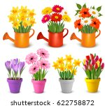 spring and summer colorful... | Shutterstock .eps vector #622758872