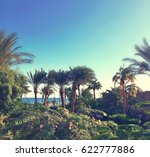 view on the tropical garden and ... | Shutterstock . vector #622777886