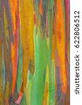 vertical rainbow eucalyptus... | Shutterstock . vector #622806512