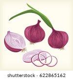 onion vegetable vector | Shutterstock .eps vector #622865162