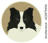 dog collection border collie... | Shutterstock .eps vector #622879496