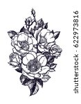 floral highly detailed hand... | Shutterstock .eps vector #622973816