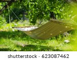 summer garden with hanging... | Shutterstock . vector #623087462