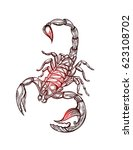 scorpion tattoo   ornate... | Shutterstock .eps vector #623108702