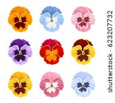 set of colorful pansy flowers... | Shutterstock .eps vector #623207732