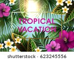 summer tropical background  for ... | Shutterstock .eps vector #623245556