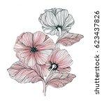 hand drawn flowers. linear... | Shutterstock . vector #623437826