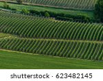 orchards | Shutterstock . vector #623482145
