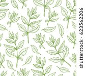 floral background. leaves... | Shutterstock .eps vector #623562206