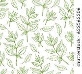 floral background. leaves...   Shutterstock .eps vector #623562206