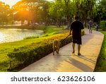 Stock photo man walking his dog in the park 623626106