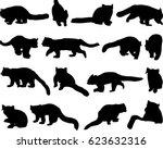 beautiful red panda or lesser... | Shutterstock .eps vector #623632316
