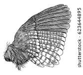 wing. hand drawn detailed bird... | Shutterstock .eps vector #623644895