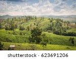 amazing wild nature view of... | Shutterstock . vector #623691206