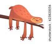 cute cartoon sloths  funny... | Shutterstock .eps vector #623820056
