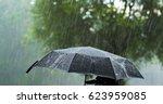 A Person Holding An Umbrella...