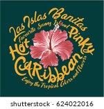 hot pinky caribbean hibiscus ... | Shutterstock .eps vector #624022016