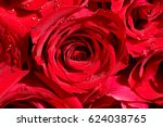 Small photo of red rose background
