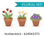 flower pot with different... | Shutterstock .eps vector #624062372