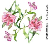 watercolor botanical... | Shutterstock . vector #624121628