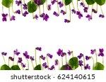 Frame Of Lowers Viola Sororia ...