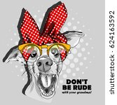 vector white dog with glasses ... | Shutterstock .eps vector #624163592