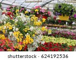 Lots Of Flowers For Sale In Th...