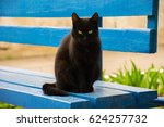 black cat resting on a blue... | Shutterstock . vector #624257732