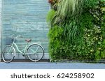the brick/stone wall with the bicycle  with  wall decorated by small tree. the nature interior design concept - stock photo