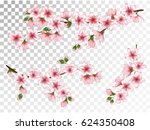 vector illustration of spring... | Shutterstock .eps vector #624350408